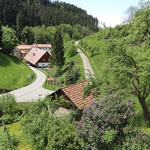 Hornsepp-Hof: Blick aus dem Fenster