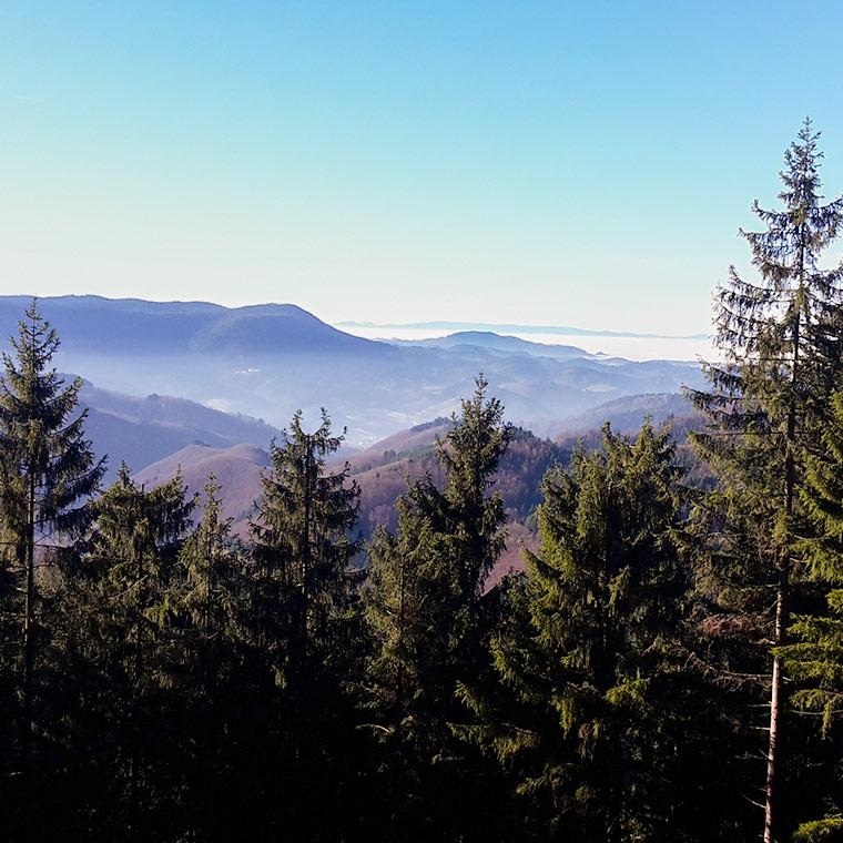 Blick von den Höhen des Schwarzwaldes