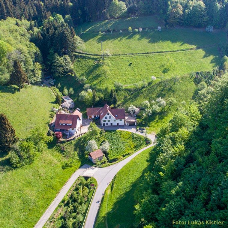 Ferienbauernhof Hornsepp im Schwarzwald