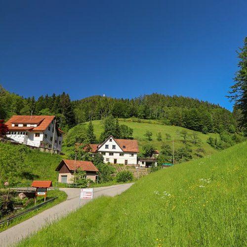 Geschützte Lage im hinteren Maisachtal im Schwarzwald
